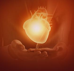 Nurture the Heart